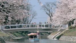 七十二峰橋2